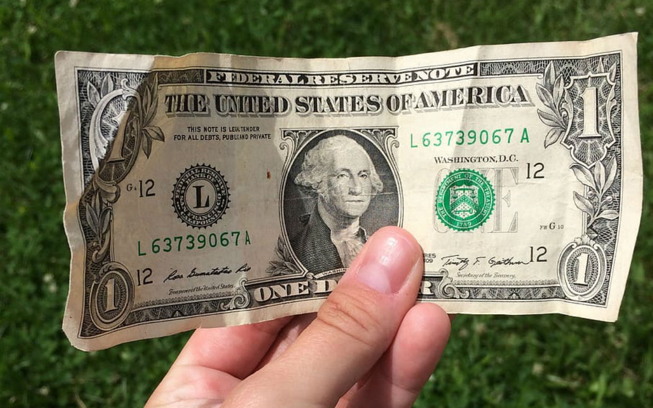 dollar-bill-hand-grass-money